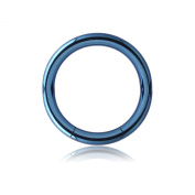 Titanium Smooth Segment Ring - Dark Blue 1.6mm x 8mm