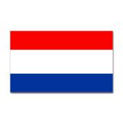 CafePress - Dutch (Netherlands) Flag Rectangle Sticker - Rectangle Bumper Sticker Car Decal