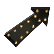 Contemporary Battery Operated Decorative LED Metal ARROW Sign Light.