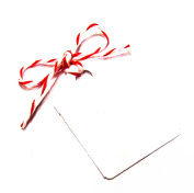 25 Small White Gift Tags / Hang Tags / Wedding Tags 42mm x 28mm (100% Recycled Card) - Decorations are NOT included