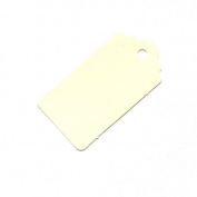 20 Medium Ivory Gift Tags /Hang Tags / Wedding Tags 67mm x 35mm