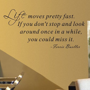 Pop Decors WL-0109-Va Inspirational Quote Wall Decal, Life Moves Pretty Fast