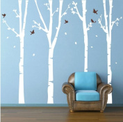 Pop Decors PT-0136-1-Vb Beautiful Wall Decal, Birch Trees