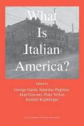 What Is Italian America?