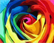 DIY Painting,canvas wall art painting by number kit- Rainbow Rose 41cm x 50cm