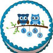 Blue Owls Boy Baby Shower Edible Cake Topper