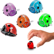 Toy Cubby Wind-Up Colourful Flipping Bugs - 6 pieces