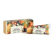 Michel Design Works Golden Pear Hand Cream