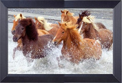 Canvas Framed Art Wild Mustangs Running The River Or The Rockies 19 x 25 Print Framed