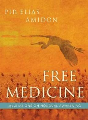 Free Medicine: Meditations on Nondual Awakening
