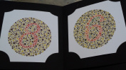 "38 PLATE ISHIHARA TESTS BOOK - For colour BLINDNESS TESTING ""FREE POSTAGE"" ;GD58GEW1YT304"