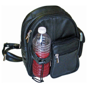 Hollywood Tag Small Daypack Backpack