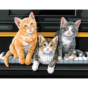 Paint Works Paint By Number Kit 14inX11inMusical Trio