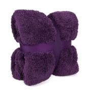 New Large 130 x 180cms Teddy Soft Cuddly Fluffy Purple / Grape / Aubergine Plain Throw Bed / Sofa Throwover Blanket