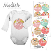 12 Monthly Baby Stickers, Tribal, Flowers, Feathers, Arrows, Girl, Baby Belly Stickers, Monthly Onesie Stickers, First Year Stickers Months 1-12, Arrows, Flowers, Tribal, Pink, Mint, Girl
