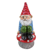33cm Multi-colour Gnome Sitting on Mushroom