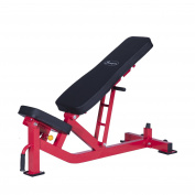Ten-Position Adjustable Home Fitness Weight Bench