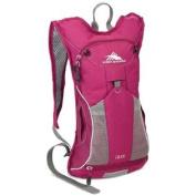 High Sierra Women's Propel 70 Hydration Pack, Boysenberry/Boysenberry/Ash
