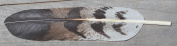 Imitation Cooper Hawk Feather