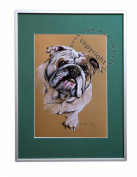 English Bulldog, unique graphics, mixed media, poster, limited edition collection