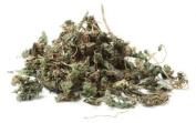 Florida Herbal Pharmacy, Nettle Leaf C/s, 120ml