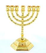 Decorative Menorah , Menora 7 Branch Jewish Israel Holy Land Jerusalem.12 Tribes Design-gold Colour 5 by holyland souvenir