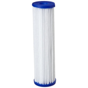 Pentek R30 Pleated Polyester Water Filters