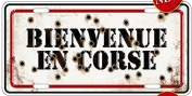 AMERICAN METAL PLATE 30x15cm COLLECTION FRANCE WELCOME TO CORSICA