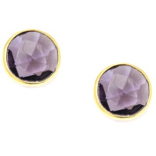 Pori 18k Goldplated Sterling Silver Round Bezel Amethyst Gemstone Stud Earrings