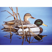 Adult Paint By Number Kit 39cm x 29cm -Blue Water Mallards