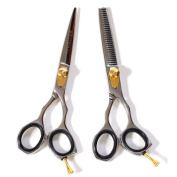 Misaki Japanese Steel Hair Styling and Thinning Shear 2pc Set
