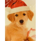 Paper Magic Cute Santa Claus Yellow Lab Puppy Dog Christmas Cards