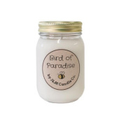"""Home Party 100% Natural 470ml """"Bird Of Paradise"""" Soy Candle"""