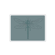 Sizzix Bigz Die with A2 Texture Fades Folder by Tim Holtz, Layered Dragonfly 330735