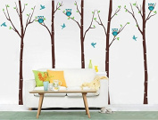 """Pop Decors """"Birch Trees with Owls"""" Wall Stickers For Baby Boy Rooms"""