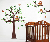 "Pop Decors ""Nursery/Owls"" Beautiful Wall Stickers for Kids Rooms"