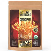 Cordyceps Mushroom Extract Powder by Real Mushrooms - Certified Organic - 60g Bulk Extract Powder - Peak Perfomance - Recovery - All-Day Energy - Perfect for Shakes, Smoothies, Coffee and Tea