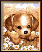 Drawing your painting, paint by number Cute dog 41cm X 50cm inches Frameless.