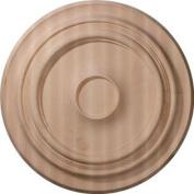Ekena Millwork CMW20TRRO 50cm OD x 4.4cm P Carved Traditional Ceiling Medallion, Red Oak