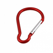Bottles Keyring Holder 10cm Long Snap Hook Clasp Carabiner Clip Red