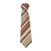 Little Things Mean A Lot New Little Boys Cotton Brown Stripe Tie Boy