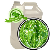 Crambe Abyssinica Seed Oil - 3.8l (3790ml)- 100% PURE
