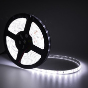 elcPark 5m/16.4ft Water proof IP65 Cool/Cold Whte SMD5630 Flexible LED Strip Light/Rope Lights with Adhensive 300LED 60LED/M DC 12V 5A 60W