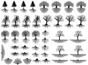 Trees & Roots 1cm - 3.2cm - Black 14CC427 Fused Glass Decals