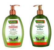 Organic Hair Energizer 5 in 1 Rejuvenating Shampoo & Conditioner with Pro Vitamin B5 385 ml