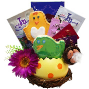 Art of Appreciation Spring Favourites Bird Nest Cookies and Tea Gift Basket
