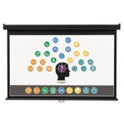 Wide Format Wall Mount Projection Screen 65 X 116 White By