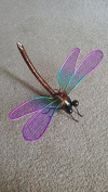 Metal Wall Art Small Colourful Dragonfly