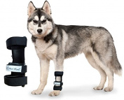 Walkin' Pet Splint for Dogs, Canine Carpal Style Front Leg Large
