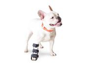 Walkin' Pet Splint for Dogs, Canine Front Leg XSmall